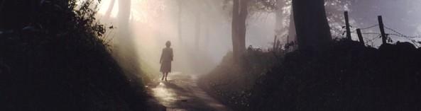 cammino-luci e ombre