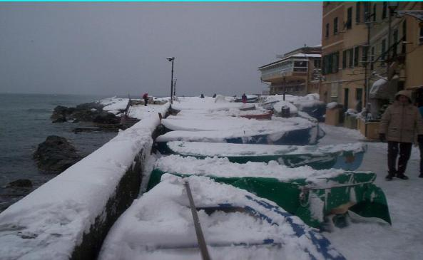 Le barche del porto di Boccadasse piene di... neve!